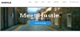 Hustle-v1.3.4-WordPress-Template-gfxfree.net_