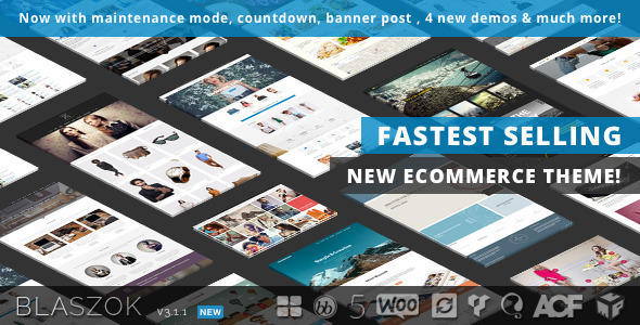 Blaszok-v.3.1.1-Ultimate-Multi-Purpose-Responsive-Theme