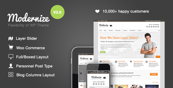 Modernize-v3.17-Flexibility-of-Wordpress