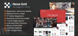 News-Grid-WP-Magazine-Theme-v2.2-