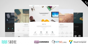 Shore-v3.0-Creative-MultiPurpose-WordPress-Theme